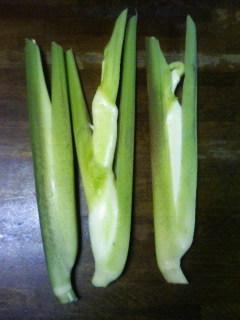 名も知らぬ野菜